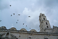 Birds flying above the basilica and the monastery of Saint Francis of Assisi (Basilica Menor de San Francisco de Asis) in Havana, Cuba.