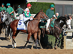 """LEXINGTON, KY - OCTOBER 12: #5 Sweeping Paddy and jockey Robby Albarado before running in the 26th running of the JPMorgan Chase Jessamine (Grade 3) $150,000 """"Win and You're In Juvenile Fillies Turf Division"""" at Keeneland Race Course.  October 12, 2016, Lexington, Kentucky. (Photo by Candice Chavez/Eclipse Sportswire/Getty Images)"""