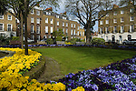 Canonbury Square gardens London N1 Georgian four story and basement terrace houses  London borough of Islington 2008 2000s UK