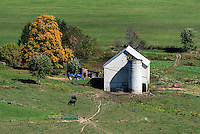 Livestock barn and feeding cattle, Ohio, USA.