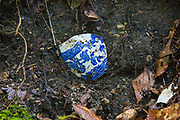 This artifact (part of a tea cup) is possibly remnants of the old Flume Reservation in Lincoln, New Hampshire. The site of the old Flume Reservation is located in the general area of today's Flume Gorge Visitor area. This is how the artifact was found; artifacts, like this tea cup, are protected and should be left where they are found.