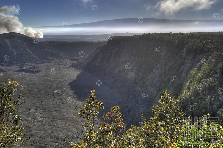 Halema'uma'u crater of Kilauea Volcano billows ash and steam, Hawai'i Volcanoes National Park, Big Island.