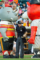 "Home plate umpire Junior Valentine finds himself caught between Zooperstars characters ""Nolan Rhino"" (left) and ""Derek Cheetah"" (right) between innings of the Carolina League game between the Carolina Mudcats and the Winston-Salem Dash at BB&T Ballpark on July 25, 2013 in Winston-Salem, North Carolina.  The Mudcats defeated the Dash 5-4.  (Brian Westerholt/Four Seam Images)"