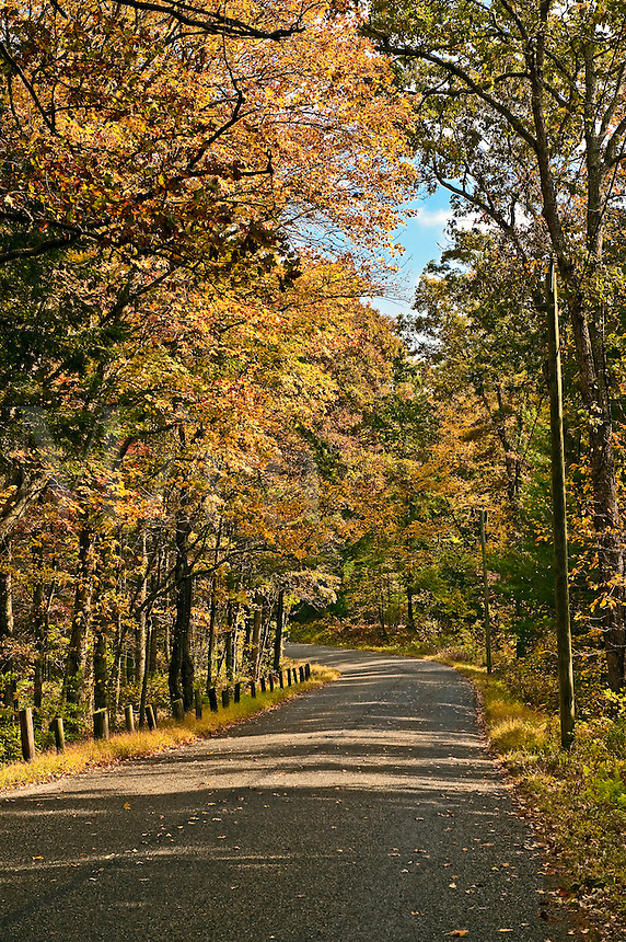 Autumn country road, Connecticut, USA