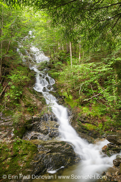 Cascade on a tributary near the headwaters of Lost River on Mount Jim in Kinsman Notch of Woodstock, New Hampshire during the summer months.