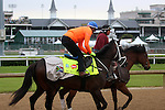 April 30, 2015 Mubtaahij and jockey Christophe Soumillon breezed at Churchill Downs in preparation for the Kentucky Derby.  ©Mary M. Meek/ESW/CSM