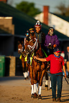 April 27, 2021: Dynamic One heads track to prepare for the Kentucky Derby at Churchill Downs in Louisville, Kentucky on April 27, 2021. EversEclipse Sportswire/CSM