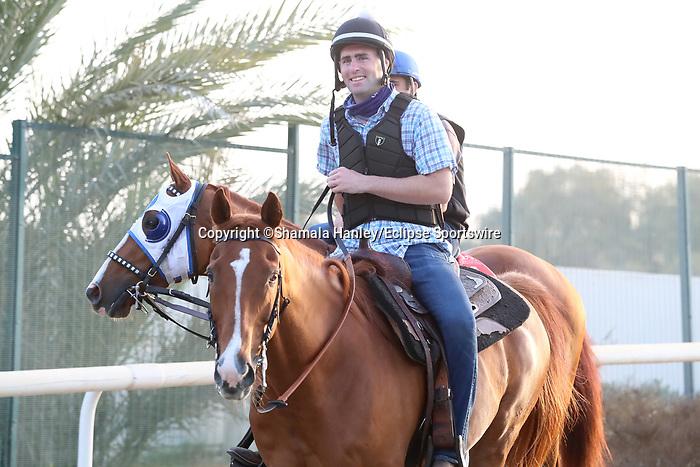 March 25, 2021: Dubai World Cup contender Mystic Guide trains on the track for trainer Michael Stidham at Meydan Racecourse, Dubai, UAE. Shamela Hanley/Eclipse Sportswire/CSM