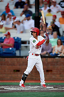 Johnson City Cardinals center fielder Jonatan Machado (51) at bat during a game against the Danville Braves on July 28, 2018 at TVA Credit Union Ballpark in Johnson City, Tennessee.  Danville defeated Johnson City 7-4.  (Mike Janes/Four Seam Images)