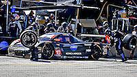 #10 Corvette DP, Ricky Taylor, Jordan Taylor, Max Angelelli, pit stop, Petit Le Mans , Road Atlanta, Braselton, GA, October 2014.   (Photo by Brian Cleary/www.bcpix.com)