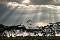 The sun is breaking through storm clouds on Crescent Island, Lake Naivasha, Kenya