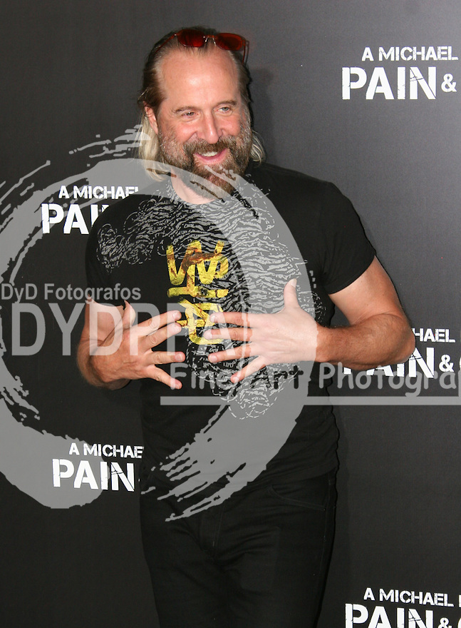 Peter Stormare.  Celebrities gathered at The TCL Chinese Theatre in Hollywood to attend the Los Angeles premiere of Paramount Picture's  PAIN & GAIN on April 22, 2013.<br />