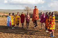 Tanzania.  Serengeti.  Maasai Villagers of Ololosokwan Performing a Welcome Dance.