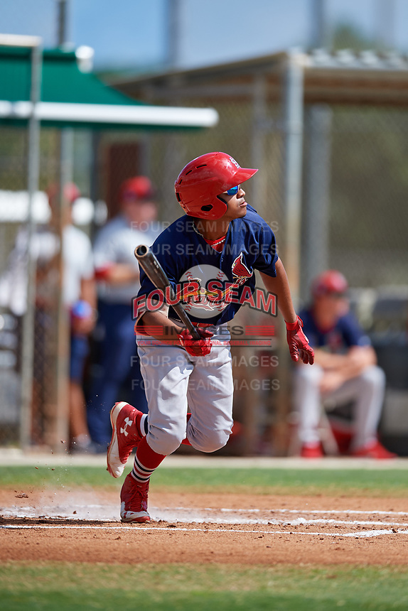 GCL Cardinals left fielder Diomedes Del Rio (44) follows through on a swing during a game against the GCL Marlins on August 4, 2018 at Roger Dean Chevrolet Stadium in Jupiter, Florida.  GCL Marlins defeated GCL Cardinals 6-3.  (Mike Janes/Four Seam Images)