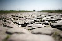 the protagonists<br /> <br /> 2015 Paris-Roubaix recon