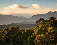 Sunrise over native forest with mountain background, Westland Tai Poutini National Park, UNESCO World Heritage Area, West Coast, South Westland, New Zealand, NZ