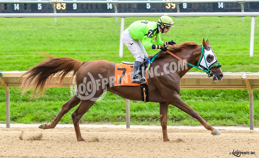 Quick and Rich winning at Delaware Park on 10/11/18