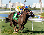 HALLANDALE BEACH, FL - FEB 17:Glory to Kitten #5 trained by Jorge R. Abreu with Irad Ortiz, Jr. in the irons wins the $60,000 Mary Todd Claiming Stakes at Gulfstream Park on February 17, 2018 in Hallandale Beach, Florida. (Photo by Bob Aaron/Eclipse Sportswire/Getty Images)