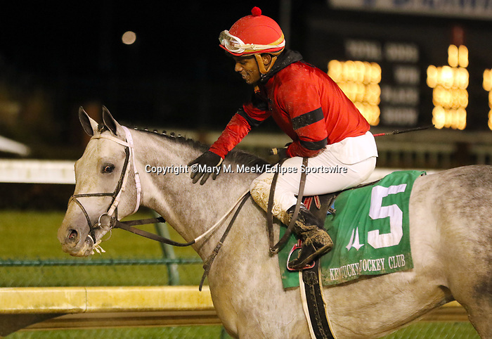 November 29, 2019 : Silver Prospector (#5, Ricardo Santana Jr., jockey) wins the93rd running of the G2 Kentucky Jockey Club Stakes at Churchill Downs, Louisville, Kentucky. Trainer Steven M. Asmussen, owner Ed and Susie Orr. By Declaration of War x Tap Softly (Tapit). Mary M. Meek/ESW/CSM