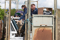 24-5-2021 Technicians Ultrasound Scanning lambs <br /> ©Tim Scrivener Photographer 07850 303986<br />      ....Covering Agriculture In The UK....