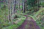 Trail access to Turtleback Mountain Preserve, a San Juan Land Trust protected property on Orcas Island, Washington.  San Juan Islands.