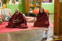 Myanmar, Burma.  Buddhist Monks Reading, Alodaw Pauk Pagoda, Nampan Village, Inle Lake, Shan State.