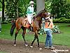 Mine o' Mine at Delaware Park racetrack on 6/21/14