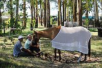 URUGUAY, people at horse riding contest / Gauchos und Pferdebesitzer bei einem Pferderennen am Wochenende
