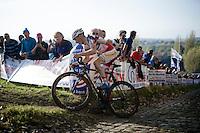 Kevin Pauwels (BEL/Sunweb-Napoleon Games)<br /> <br /> Koppenbergcross 2014