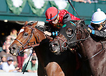 LEXINGTON, KY - OCTOBER 07:  #1 A.P. Indian and jockey Joe Bravo win the 164th running of the Stoll Keenon Ogden Phoenix (Grade 2) $250,000 win and you're in Breeder's Cup Sprint Division for owner Green Lantern Stables, and trainer Arnaud Delacour at Keeneland Racecourse.  October 7, 2016, Lexington, Kentucky. (Photo by Candice Chavez/Eclipse Sportswire/Getty Images)