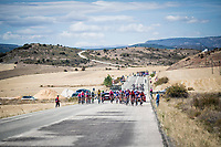 with strong crosswinds, the peleton fractures into many (9 through the feedzone) pockets of riders and makes for fierce racing form start to finish at a (very) high average speed (50.63 km/h)<br /> <br /> Stage 17: Aranda de Duero to Guadalajara (220km)<br /> La Vuelta 2019<br /> <br /> ©kramon