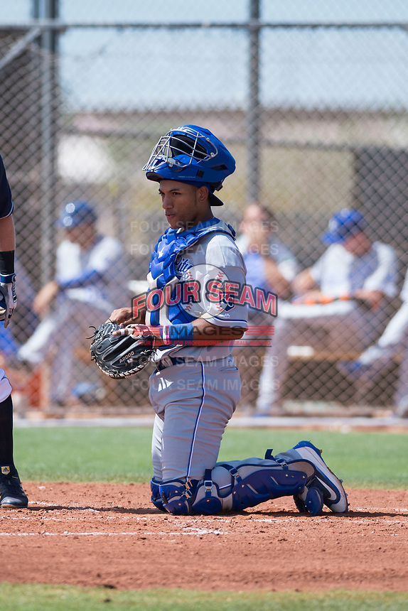 AZL Royals catcher Stephan Vidal (13) during an Arizona League game against the AZL Padres 1 at Peoria Sports Complex on July 4, 2018 in Peoria, Arizona. The AZL Royals defeated the AZL Padres 1 5-4. (Zachary Lucy/Four Seam Images)