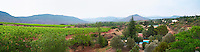 View over the vineyards near St Jean de la Blaquiere from the hotel Le Sanglier in the St Saturnin / Montpeyroux district Languedoc. France. Europe. Vineyard.
