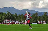 Jul 31, 2009; Flagstaff, AZ, USA; Arizona Cardinals wide receiver (85) Jerheme Urban during training camp on the campus of Northern Arizona University. Mandatory Credit: Mark J. Rebilas-