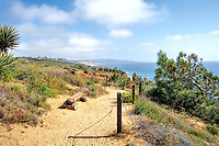 View at Torrey Pines Park on the Guy Fleming loop trail.