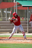 GCL Cardinals Cristhian Longa (41) at bat during a Gulf Coast League game against the GCL Astros on August 11, 2019 at Roger Dean Stadium Complex in Jupiter, Florida.  GCL Cardinals defeated the GCL Astros 2-1.  (Mike Janes/Four Seam Images)