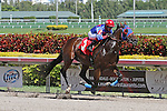 Social Inclusion (KY) with Luis Contreras on board breaks his maiden by 7 1/2 lengths at Gulfstream Park.  Hallandale Beach, Florida 02-22-2014