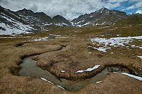 A meandering creek in the Talkeetna Mountains of Alaska.