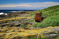 Rusted fuel tank on Brush Island, New South Wales South Coast and Coastal Island bird surveys