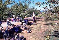 5th Annual Garlic Festival, August 2013 (hosted by The Sharing Farm) at Terra Nova Rural Park, Richmond, BC, British Columbia, Canada - Garlic Lovers take a Break from the Festivities