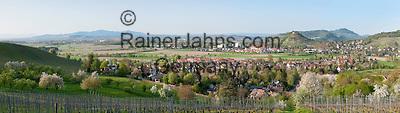 Germany, Baden-Wuerttemberg, Markgraefler Land, wine village Staufen: above castle ruin Staufen nested on a hill   Deutschland, Baden-Wuerttemberg, Markgraeflerland, Weinort Staufen: auf einem Huegel die Burgruine Staufen
