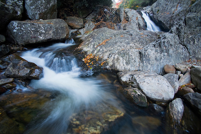 Autumn along West Fork of Pigeon River