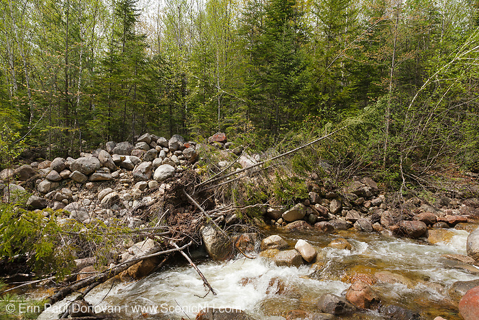 Location of where a bridge along the East Branch & Lincoln Railroad (1893-1948) crossed Jumping Brook in the Thoreau Falls Valley of the Pemigewasset Wilderness of Lincoln, New Hampshire. This branch of the railroad, the North Fork Branch, ended a short ways beyond logging Camp 23.