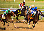 OZONE PARK, NEW YORK - DEC 2: *, #7, ridden by Luis Saez, wins the Go for Wand Handicap, at Aqueduct Racetrack, on December2, 2017 in Ozone Park, New York. ( Photo by Dan Heary/Eclipse Sportswire/Getty Images)