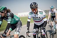 Peter SAGAN (SVN/BORA-Hansgrohe)<br /> <br /> 110th Milano-Sanremo 2019 (ITA)<br /> One day race from Milano to Sanremo (291km)<br /> <br /> ©kramon