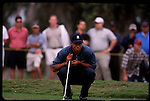 Tiger Woods contemplates his putt at the Genuity Open at Doral in Miami, Fl.