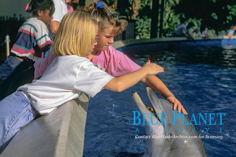 children pet captive bottlenose dolphins, Tursiops truncatus, in shallow petting pool, Orlando, Florida