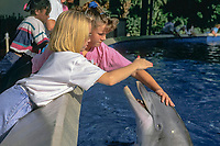 children pet captive bottlenose dolphins, Tursiops truncatus, in shallow petting pool, Orlando, Florida
