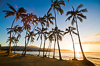 Palm trees at sunset at Haleiwa Beach Park on the North Shore of Oahu, Hawaii, with Haleiwa's yacht harbor, Mount Kaala and Kaena Point in the background