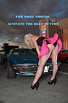 Sample-Pinup Hot August Nights 2014